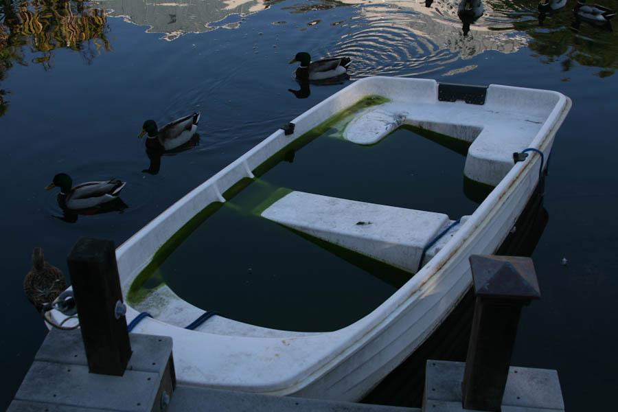 http://travel.frankazoid.com/http://reports.frankazoid.com/201001_la2/IMG_1231.jpg