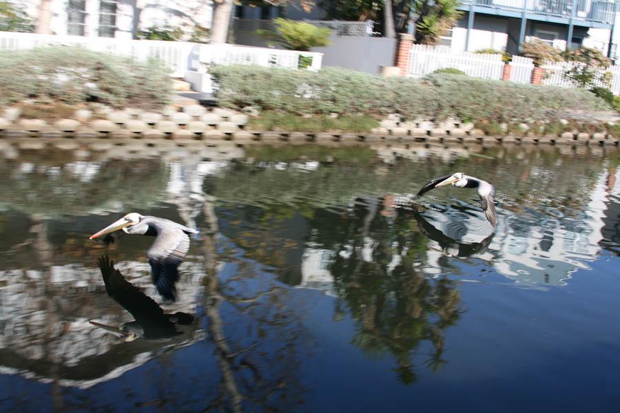 http://travel.frankazoid.com/http://reports.frankazoid.com/201001_la2/IMG_1241.jpg