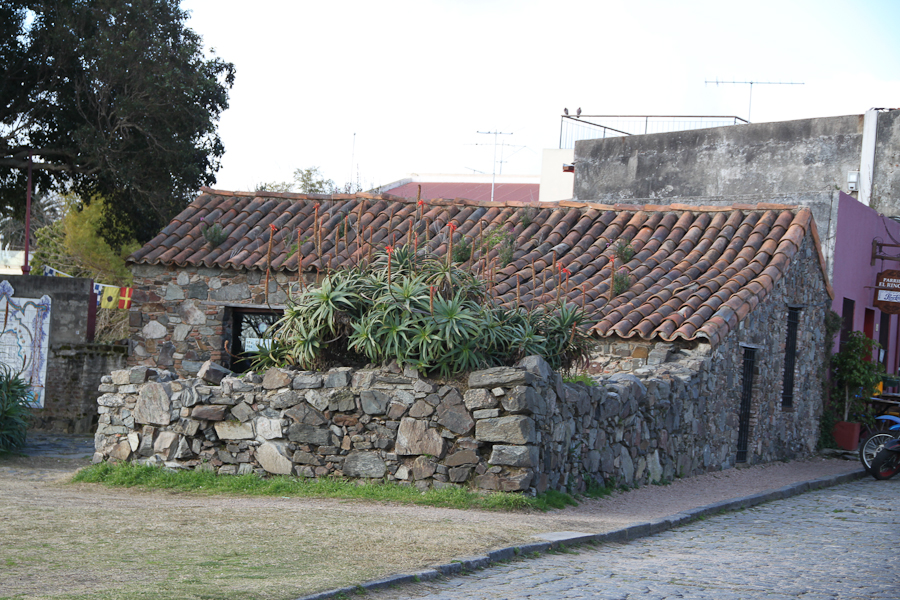 http://travel.frankazoid.com/http://reports.frankazoid.com/201008_Uruguay/IMG_5125.jpg