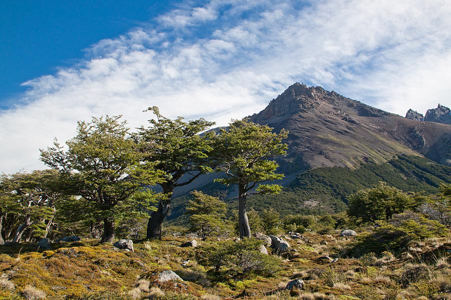 http://reports.frankazoid.com/201102_patagonia/IMG_1776.jpg