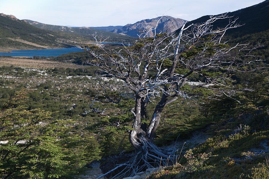 http://reports.frankazoid.com/201102_patagonia/IMG_1791.jpg