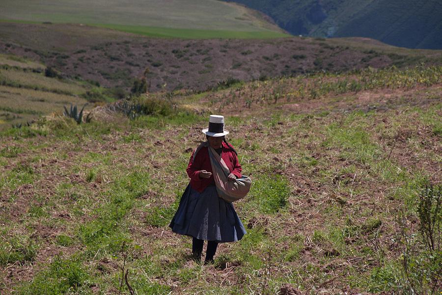http://reports.frankazoid.com/201103_cuzco/IMG_2573.jpg