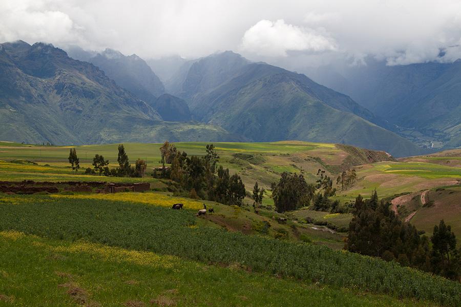 http://reports.frankazoid.com/201103_cuzco/IMG_2583.jpg