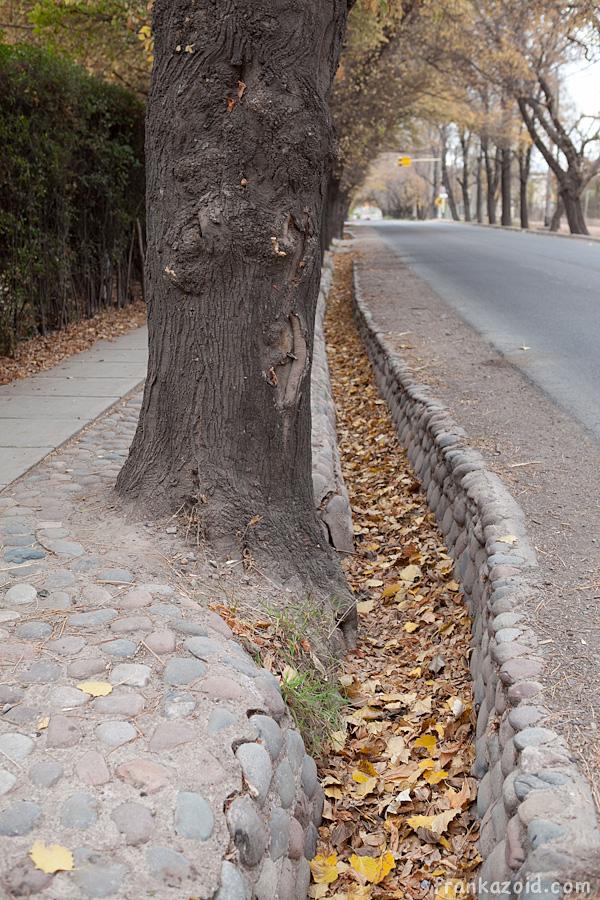 http://reports.frankazoid.com/201105_mendoza/_MG_6707.jpg