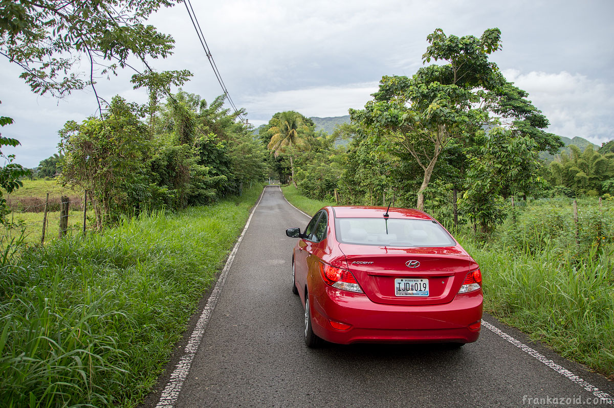 Puerto Rico El Yunque photo