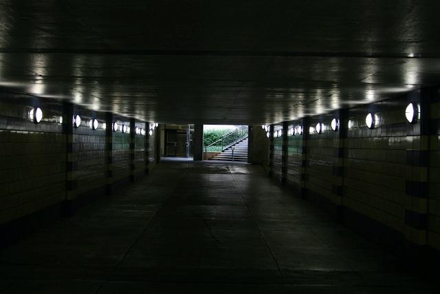 http://travel.frankazoid.com/https://reports.frankazoid.com/2009_chicago/IMG_7049.jpg