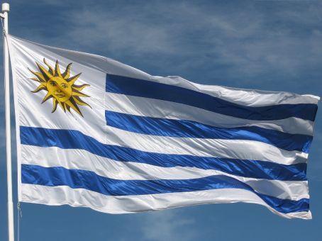 http://travel.frankazoid.com/https://reports.frankazoid.com/201008_Uruguay/UruguayFlag.jpg