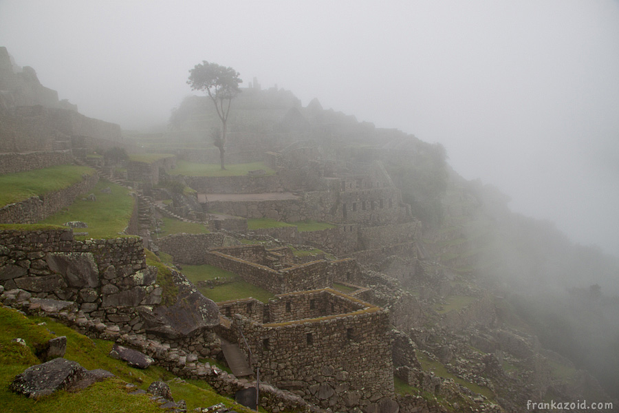 https://reports.frankazoid.com/201103_machupicchu/_MG_3016.jpg